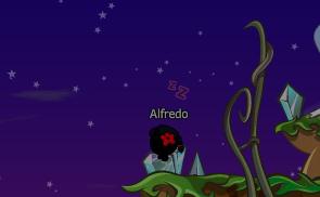 Ici Alfredo
