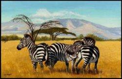 Zèbres et Girafes :