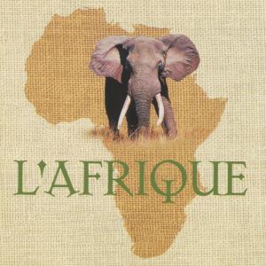 L'Afrique :