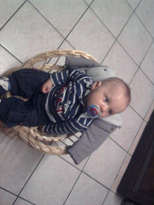 mon neveu il et choukard