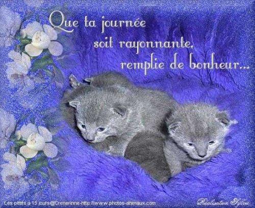 Bon Anniversaire Sophie Blog De Lapommeraie22