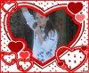 moi  et des coeur