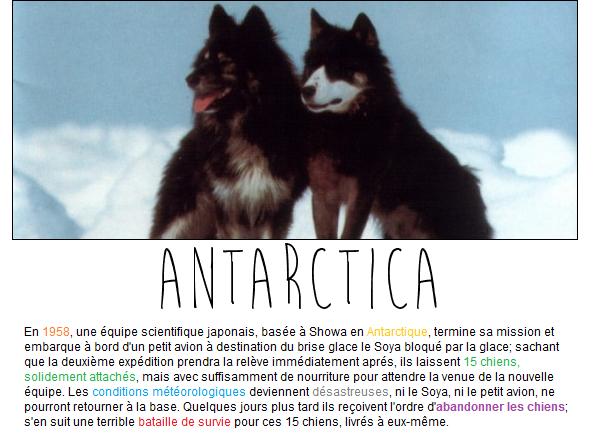 ✪Culture ▼ Antartica : Histoire vraie