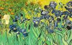 Pour ma chère maman,les Iris de Van Gogh!!!