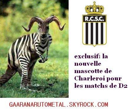 EXCLUSIVITE:la nouvelle mascotte de Charleroi pour la D2