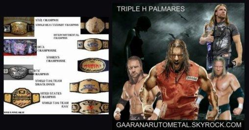 TRIPLE H HISTORY PART VII : PALMARES