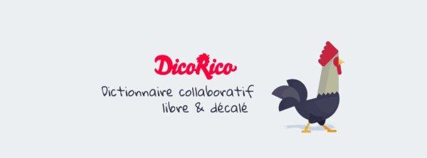 DicoRico le nouveau dictionnaire déjanté