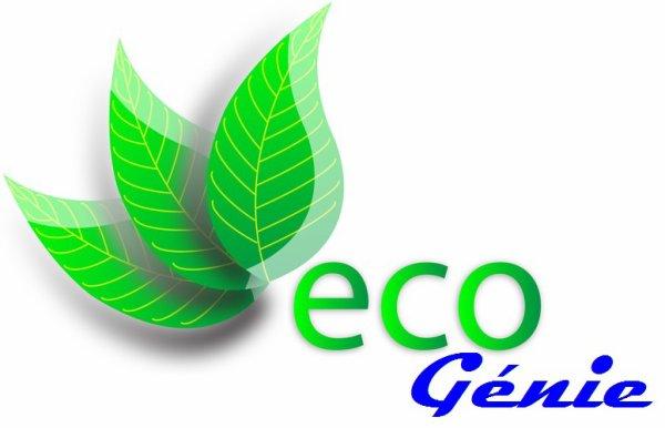éco génie, une start-up pour la promotion de la préservation environnementale lancée par elessa belle gilbert