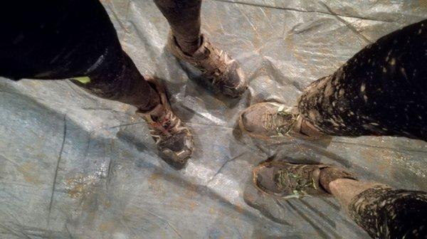DEVINETTE : 20 janvier humide et boueux