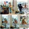 """28 Juillet 2011 ◇ Ashley à été aperçu dans une bijouterie """"Jewerly"""" dans West Hollywood."""