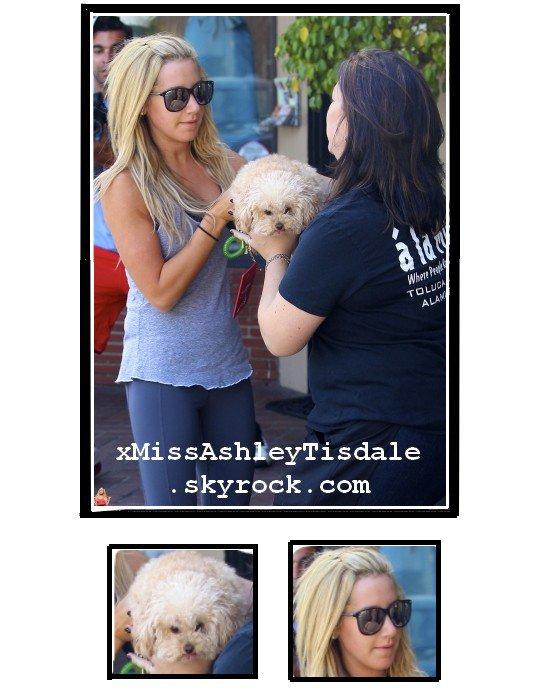 Le 21 septembre 2011 ◇ Ashley laisse son chien Maui au centre de soin pour chien A La Mutt a Toluca Lake.