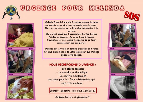 SOS POUR MELINDA