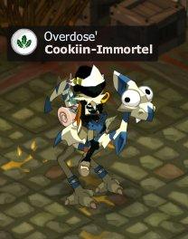 Cookiin <3