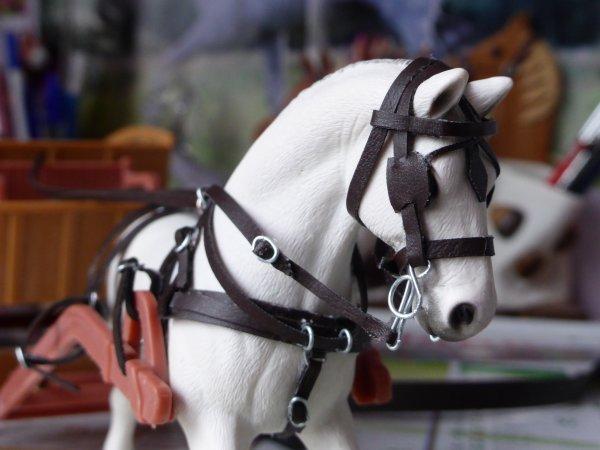 Le harnais cheval