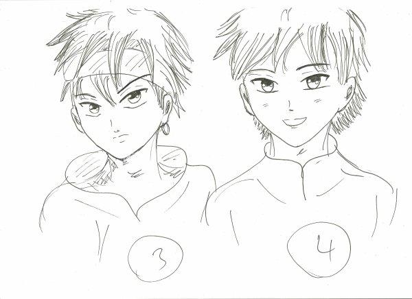 sondage héros pour mon manga