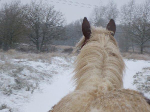 Neige neige !!!