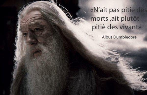 """""""N'aie pas pitié des morts ,ait plutôt pitié des vivants"""" Albus Dumbledore"""