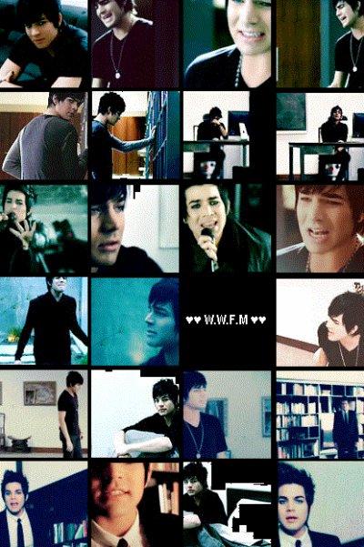 #02 montage W.W.F.M
