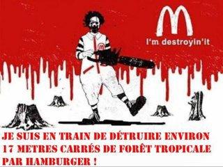 Mac Do accusé de détruire la forêt d'Amazonie