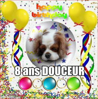 8 bougies pour Douceur le 11 mars
