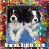 Diana et Dahlia ont 9 ans