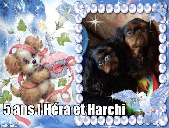 Héra et Harchi
