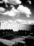 Photo de Algeriiienne23