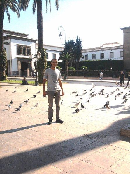"""En mode """" L'Homme aux Pigeons"""""""