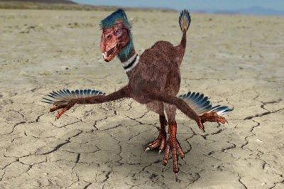 Dromæosaure
