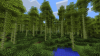 Top 8 des biomes de BOP