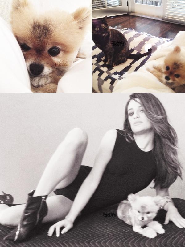 PERSONNAL PICTURES//Instagram Voici les dernières photos personnelles de Lea postées sur Instagram. Lea a désormais un chien nommé Pearl.