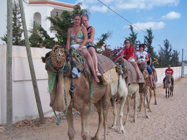 djerba 2010 ( tunisie )
