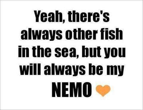 Nemo <3 Haiko Tawa