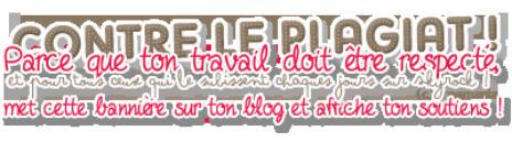 Introduction a mon blog