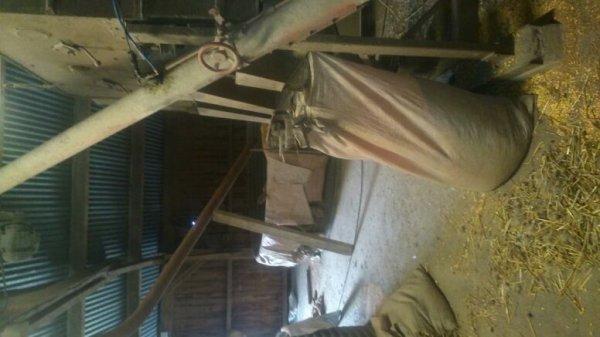 Dans les silos