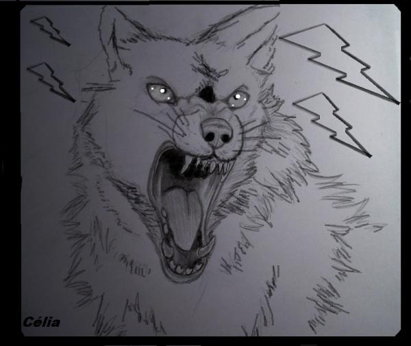 MON DESSIN <Un Loup>