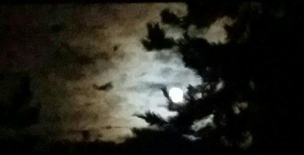 Magnifique claire de Lune