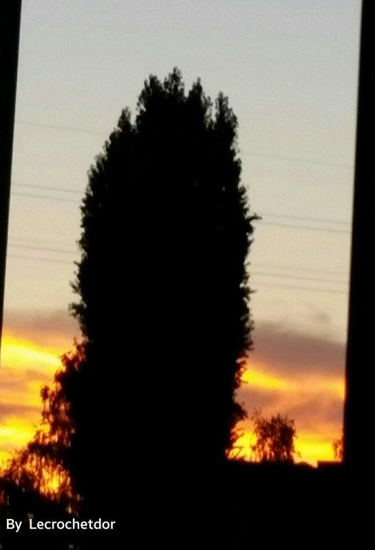 Mes couchers de soleil