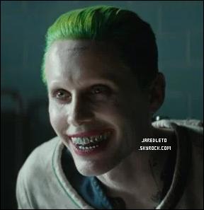 . . __▪ Jared Leto s'est livré à quelques confidences sur sa vie personnelle     .  Dans «Suicide Squad», il succède à Heath Ledger dans le rôle du Joker. A 44ans,Jared Leto,qui fait toujours la moitié de son âge, reste une énigme pour beaucoup.
