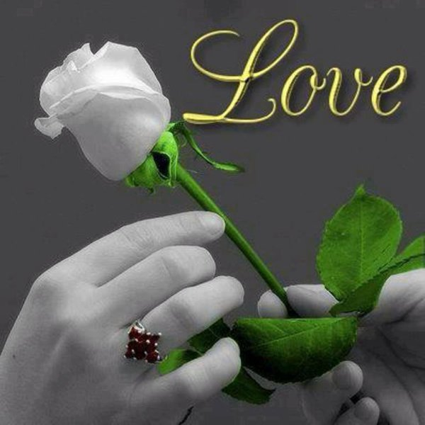 Fleur de l'amour de mon coeur