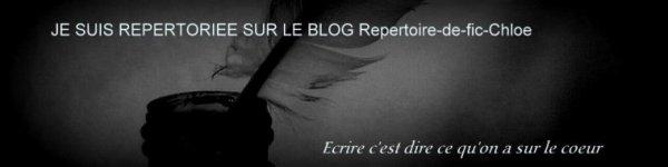Présentation du blog ! ♥