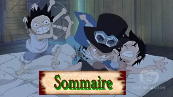 Sommaire.