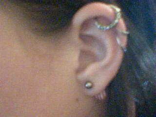 Cat gorie 4 piercings oreille tout sur les piercings - Peintre qui s est coupe l oreille ...