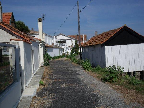 Les cabanes...vues côté terre! (3)