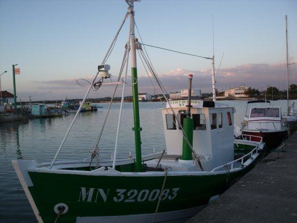 L'Eguille sur Seudre...Le port (1)
