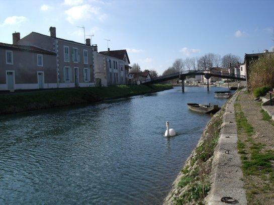 Le Marais Poitevin (2), Coulon...la Sèvre