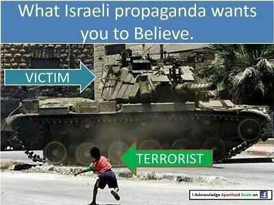 le vrai terroriste c qui ?