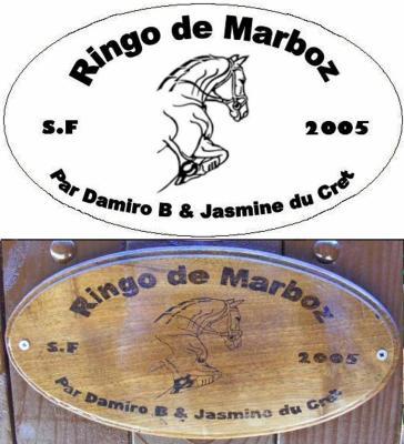 PYROGRAVURE FINIE ENVOYEE      RINGO DE MARBOZ