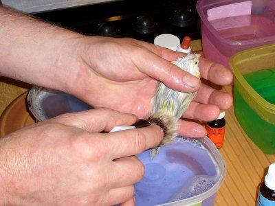 Lavage d'agathe opal jaune mosaique type 1