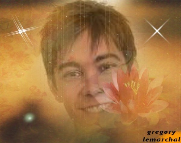 montage gregory